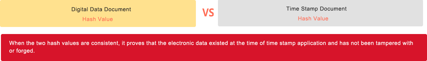 Digital Data Document vs. Time Stamp Document